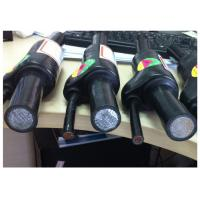 Prefabricated Branch XLPE Insulation Cable PVC Sheathed Core CCA Conductor Manufactures