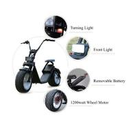 EcoRider Electric Scooter, 1200w Electric Scooters  with removable battery Manufactures