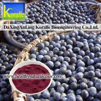 China Acai Berry Extract on sale