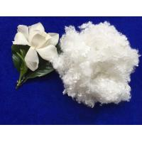 7Dx64MM raw white hollow conjugated siliconized polyester staple fiber in virgin grade Manufactures