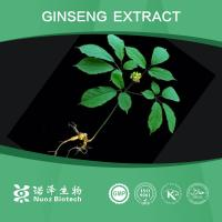 Wholesale Panax Ginseng Root Extract   10% HPLC Manufactures