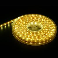 30LED/m 5050SMD IP65 Waterproof LED Christmas Light LED Rope Light from Youth Green Lighting Technology Co., Ltd Manufactures