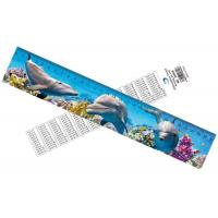 Deep Images 3D Dolphin Cartoon Scale Lenticular Photo Printing / PET Plastic Straight Ruler Manufactures