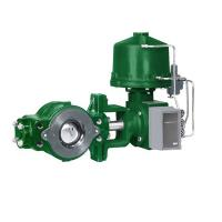 Green Fisher Diaphragm Actuator , Fisher Gas Regulator V250 Control Valve Manufactures