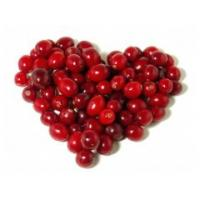 For beverage Spray Dried cranberry powder new product Cranberry juice powder Manufactures