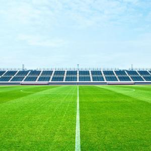 Fire Retardant Artificial Grass Soccer Field / Plastic Fake Grass Football Field