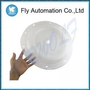 China 2 Inch Aro Diaphragm Pump Repair Kit 96392 PTFE Material 666251-eeb-c on sale
