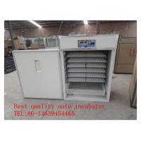 China Best price full automatic egg incubator on big sale TD-2112 on sale