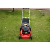 China Gasoline Engine Hand Push Type Grass Lawn Mower on sale