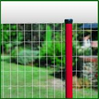 Plastic Coated Wire Mesh Panel Fence Manufactures