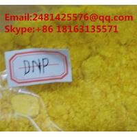 Weight Loss 2,4- Dinitrophenol DNP Anabolic Raw Steroid Powder for Obesity CAS 51-28-5 Manufactures