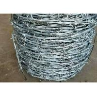 China Electro Galvanized Barbed Wire with Sharp Points for Wire Fence Panels on sale