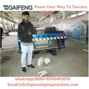 GF-1.9 China  Small Tiger stone  interlocking brick paving machine