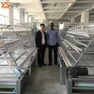 China Trade Assurance Chicken Egg Cage for Kenya Zambia Uganda Tanzania Farm WhatsApp:+8615638238763 on sale
