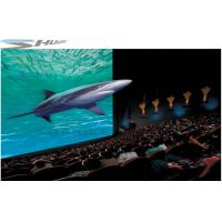 XD Simulator Cinema, 5D Movie Theater Factory With Projectors, Screen System Manufactures