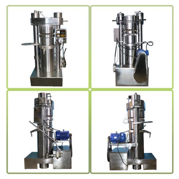 Quality 6YY-230A Processing Walnut Olive Oil Presser Oil Expeller Machine 380 V / 220 V for sale
