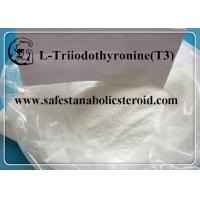 China CAS 55-06-1 Fat Loss Hormones Natural Weight Loss Powder T3 Hormones L-Triiodothyronine on sale
