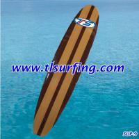 Fanatic sup/Sup starboard/Top Surfing Industrial Limited Manufactures