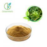 Tribulus Terrestris Extract Powder 40%- 90% Saponins for Sex Medicine Manufactures