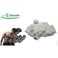 Muscle Building Raw Stanolone / Androstanolone Powders Steroid Hormone 99% High Purity Manufactures