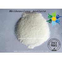 China Methenolone Acetate Muscle Building Steroids Primobolone For Muscle Gain on sale