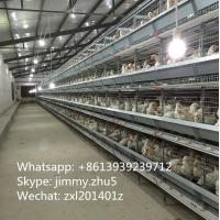 China High Quality 96 Birds Automatic System Battery Chicken Cage Layer Cage For Sale on sale