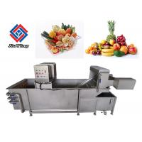 Automatic Air Bubble Vegetable And Fruit Washing Machine For Food Processing Industry Manufactures