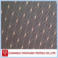 20D Nylon Transparent Tulle Net Fabric for Garment Manufactures