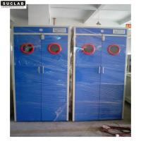 China Steel Laboratory Gas Storage Cabient With Exhaust and Alarm System on sale