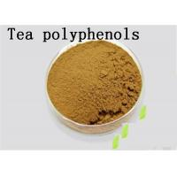 China Antioxidant Natural Green Tea Extract Tea Polyphenols Catechins EGCG Brown on sale