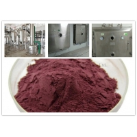 GMP 25% Proanthocyanidins Cranberry Extract Powder Manufactures