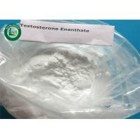 China Lean Muscles Gain Injectable Male Hormone Testosterone Enanthate CAS 315-37-7 on sale
