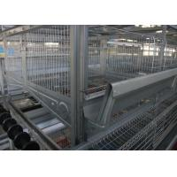 China Several Tiers Poultry Farm Feeding System High Elasticity Reduce  Deformation on sale