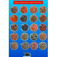 China Ornamental Fresh Water Small Shrimp Fish Food on sale
