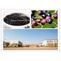 CAS 84603 58 7 Anthocyanins Elderberry Fruit Extract Manufactures