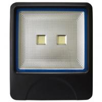 Epistar COB LED Flood Light 100W Black Silver Outdoor With 3 Years Warranty Manufactures