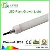Hydroponic LED Tube Grow Lights T8 With Rotatable End Cap , 120 Degree Angle Manufactures