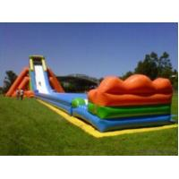 Giant Inflatable Water Slide Manufactures