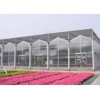 Section Width 3-6m Multi Span Greenhouse Hot Galvanized Steel Frame For Agricultural Manufactures
