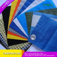 China China factory supply heavy duty tarps with promotion price on sale