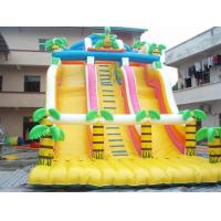 Inflatable Slide with Pool/Inflatable Water Slide /Inflatable Water /Inflatable Toy (LT-SL Manufactures