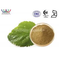 China Water Soluble Morus Alba Bark Extract , White Mulberry Leaf Extract Anti - Inflammation on sale