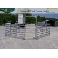 Galvanized Portable Horse Fencing Panels , Free Standing Livestock Panels Manufactures