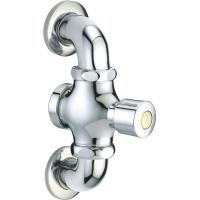 Double In Wall Toilet Flush Valve Matching With G1 Or G3/4 Inlet For Squat Pan for sale