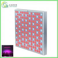 Quality Red LED Indoor Garden Lights / Energy Efficient LED Flowering Grow Lights , AC for sale
