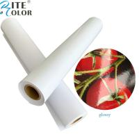 Primed 24'' 36'' glossy / luster RC inkjet roll photo paper for pigment ink printing Manufactures