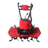 China small machine lightweight 6.5hp hand gas garden tillers for sale on sale