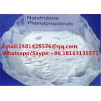 Top Quanlity Anabolic Nandrolone Steroids Nandrolone Phenylpropionate Powder CAS 62-90-8 Manufactures