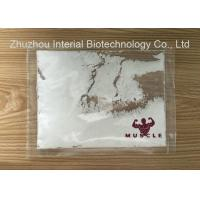 Local Anesthetic Powder Benzocaine Hydrochloride / Benzocaine HCl Anti Paining Manufactures
