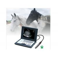 China Laptop Veterinary Portable Ultrasound Machine Full Digital Ultrasonic Diagnostic System on sale